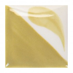 CN332 - Olive vif