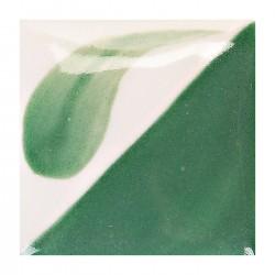 CN162 - Vert hiver vif