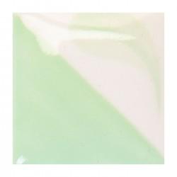 CN161 - Vert hiver clair