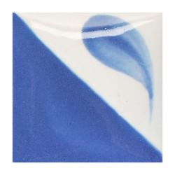 CN112 - Bleu delf vif