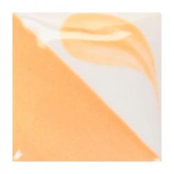 CN041 - Papaye clair