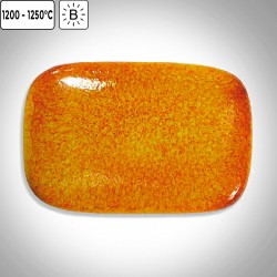 FS6031 - Orange braise