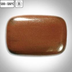 FS6004 - Mars