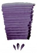 P9937 - Violet