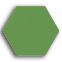 Vert véronèse N° 66 - 8 g