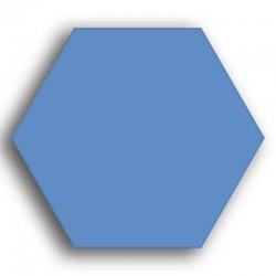 Bleu nouveau N° 70 - 8 g