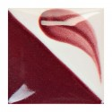 CN513 - Fruits rouges