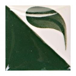 CN173 - Vert varech foncé