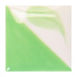 CN171 - Vert varech clair